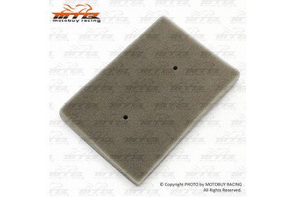 KAWASAKI NINJA 250 HIGH PERFORMANCE AIR FILTER